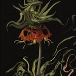 Aniquilación, de Jeff VanderMeer