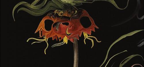 Aniquilacion, de Jeff VanderMeer